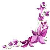 De bloemen van de lelie Royalty-vrije Stock Fotografie