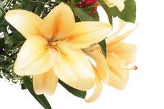 De bloemen van de lelie Stock Afbeeldingen