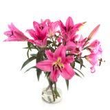 De bloemen van de Lelie van het boeket Stock Foto