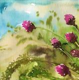 De bloemen van de lente in de weide Royalty-vrije Stock Foto's