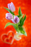 De bloemen van de Lente van de tulp op rode fonkelingsachtergrond Royalty-vrije Stock Foto's