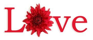De bloemen van de liefde Royalty-vrije Stock Afbeeldingen