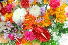 De bloemen van de mengeling stock foto's
