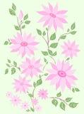 De bloemen van de pastelkleur. Stock Fotografie