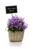 De bloemen van de schildliefde Royalty-vrije Stock Afbeeldingen