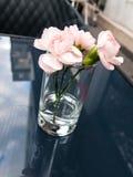De bloemen van de schoonheid Royalty-vrije Stock Foto's