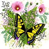 De bloemen van de vlinder en van de lente Stock Foto