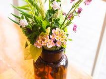 De bloemen van de zomer Royalty-vrije Stock Foto
