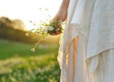De bloemen van de zomer Stock Foto