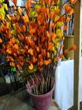 De bloemen van het document stock foto