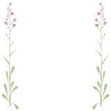 De bloemen van het frame (vector) Royalty-vrije Stock Foto