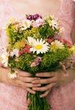 De bloemen van het gebied Stock Fotografie