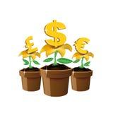 De bloemen van het geld Stock Foto
