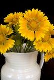 De Bloemen van het Huis van het land Stock Afbeelding
