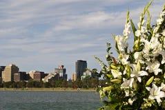 De bloemen van het huwelijk, Melbourne, Australië Royalty-vrije Stock Foto's