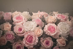De bloemen van het huwelijksboeket Royalty-vrije Stock Fotografie