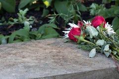 De bloemen van het huwelijksvoorstel verlaten op steen over vakantieseizoen Stock Afbeeldingen