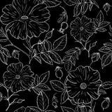 De bloemen van het lijnpatroon Stock Foto's