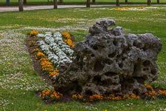 De Bloemen van het massief in een Tuin Openbaar Park royalty-vrije stock fotografie