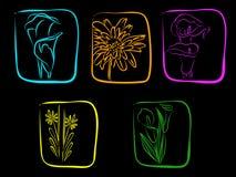 De bloemen van het neon Stock Foto