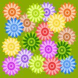 De bloemen van kleuren Royalty-vrije Stock Fotografie