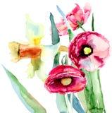 De bloemen van narcissen en van de Papaver Stock Foto's