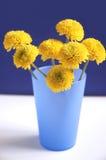 De bloemen van Nice stock foto's