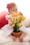 De bloemen van studigele narcissen van het babymeisje Royalty-vrije Stock Foto's