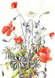 De bloemen van Watercolour Stock Foto