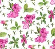 De bloemen van de waterverf Heldere Roze Azalea's Royalty-vrije Stock Foto's