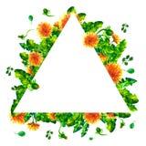 De bloemen van de waterverfpaardebloem, bloesems driehoekig die kader op witte achtergrond wordt geïsoleerd Stock Fotografie