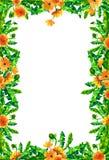 De bloemen van de waterverfpaardebloem, bloesems rechthoekig die kader op witte achtergrond wordt geïsoleerd Stock Fotografie