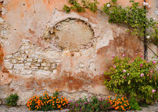 De bloemen verfraaien een muur stock afbeeldingen