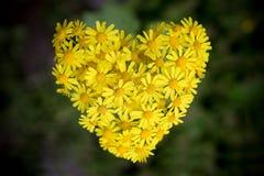 De bloemen vormen de vorm van het hart Stock Foto