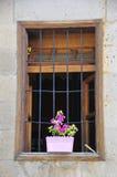De bloemen zijn in potten op het balkon naast venster van een huis Royalty-vrije Stock Foto's
