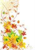 De bloemenachtergrond van de herfst Stock Illustratie