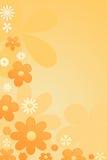 De bloemenachtergrond van de kleur Stock Fotografie
