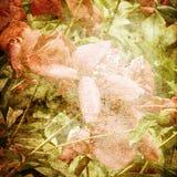 De bloemenachtergrond van de kunst Royalty-vrije Stock Afbeeldingen