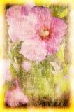 De bloemenachtergrond van de kunst grunge Stock Afbeelding