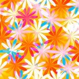 De Bloemenachtergrond van de lente Stock Afbeeldingen