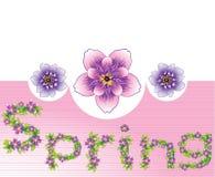 De bloemenachtergrond van de lente Royalty-vrije Stock Foto