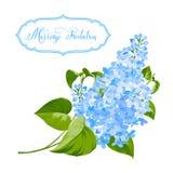 De bloemenachtergrond van de lentesiringa Stock Foto