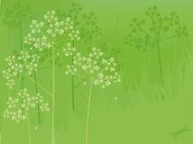De bloemenachtergrond van de zomer Stock Fotografie