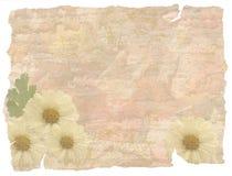 De bloemenachtergrond van Grunge Royalty-vrije Stock Foto