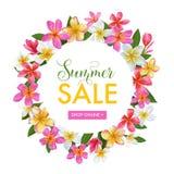 De Bloemenbanner van de de zomerverkoop Seizoengebonden Korting die met Roze Plumeria-Bloemen adverteren De tropische Paradijslen vector illustratie
