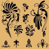 De bloemenelementen van het patroon voor ontwerp Stock Foto's