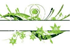 De bloemengrens van de schoonheid Stock Foto
