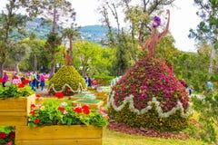 De bloemensamenstelling tijdens Euroflora 2018, de internationale tentoonstelling van bloem en de sierplant maakten in Genoa Geno royalty-vrije stock afbeeldingen