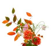De bloemensamenstelling van de herfst Stock Fotografie