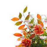 De bloemensamenstelling van de herfst Stock Foto's